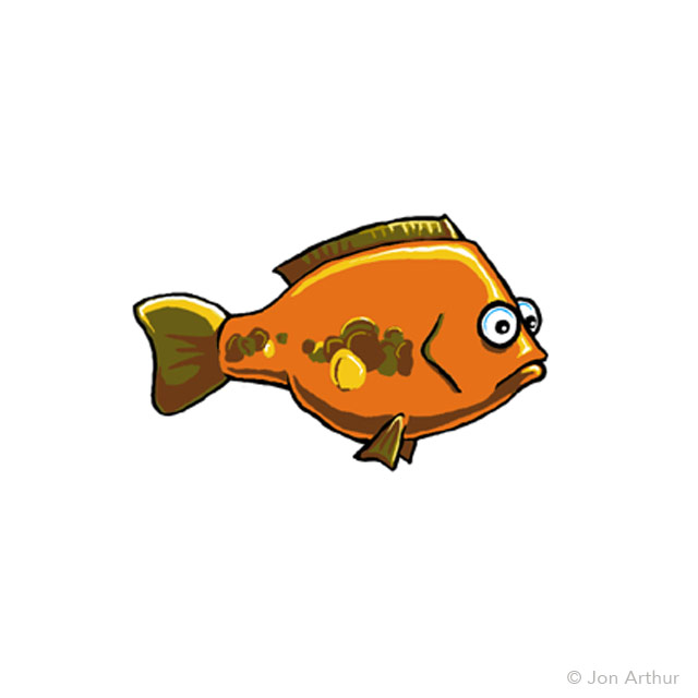 fish-plate-carp