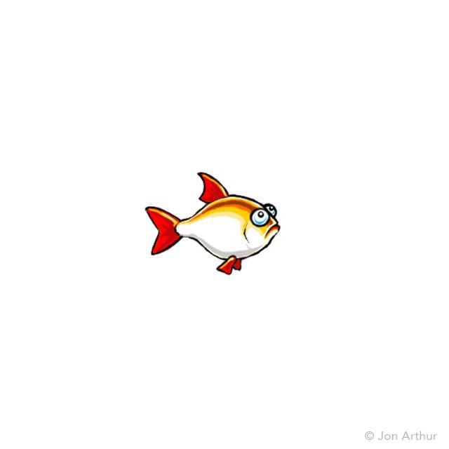 fish-plate-rudd