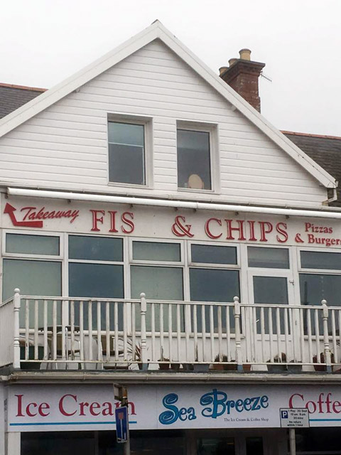 f1s-and-chips
