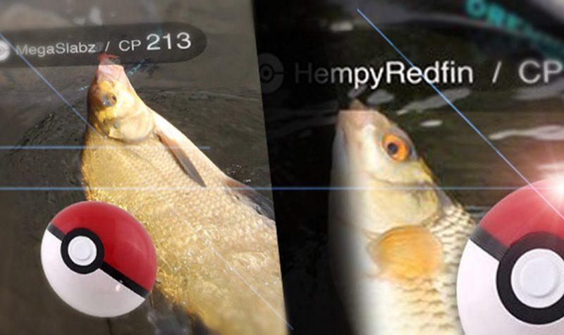 fishemon-ft1
