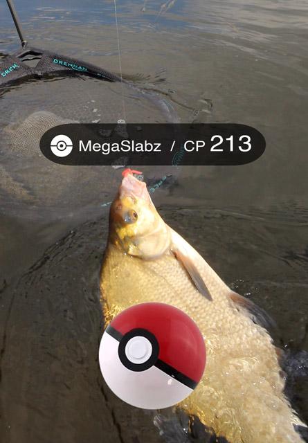 fishemon-megaslabz