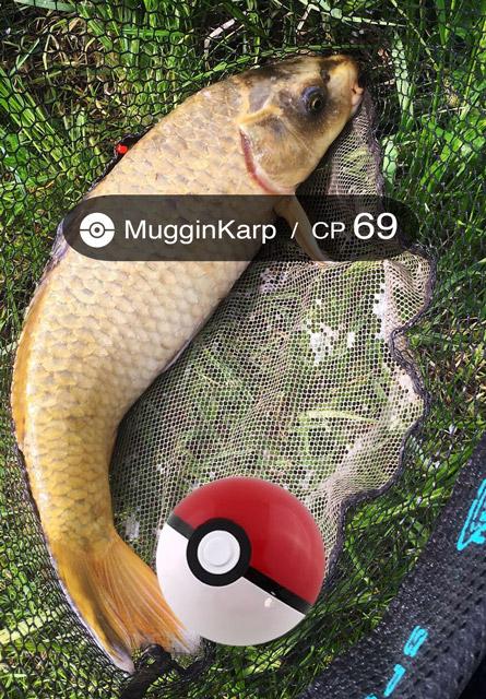 fishemon-mugginkarp