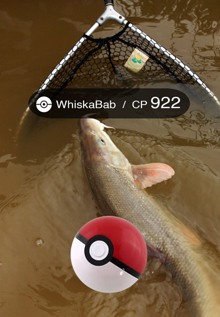 fishemon-whiskabab